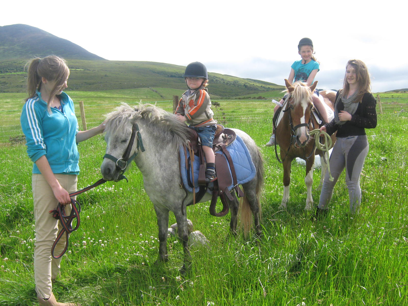contact kerry pony rides in ireland for a booking